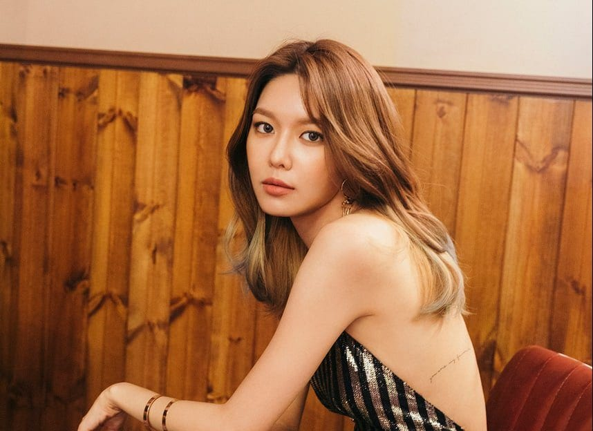 WATCH: SNSD Drops Dazzling Teasers For Sooyoung